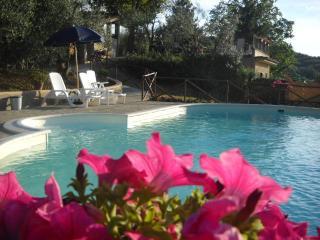 Bright Condo with Internet Access and Television - Poggibonsi vacation rentals