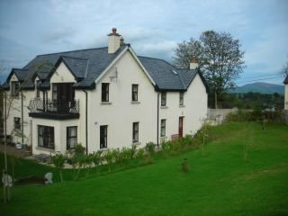 Beautiful 4 bedroom House in Graiguenamanagh with Internet Access - Graiguenamanagh vacation rentals