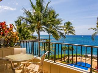 Free car* with WC230-exquisite ocean front 2bd/2.5bth with stunning ocean views-heated pool, hot tub - Waimea vacation rentals