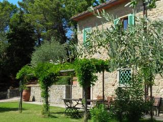 Farmer's house.Huose with pool - San Giustino Valdarno vacation rentals