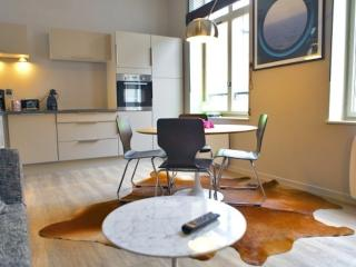 APPART HOTEL HARIS LILLE - Lille vacation rentals