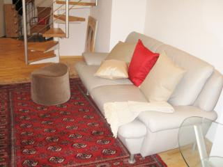 Old Town Duplex Apartment with Terrace - Heidelberg vacation rentals