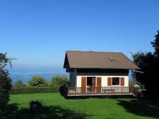 villa proche evian vue magnifique sur le lac Léman - Lugrin vacation rentals