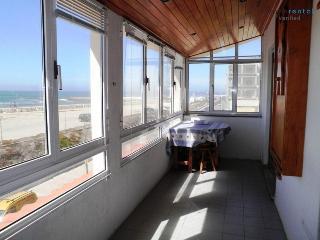 Tarragon Apartment - Esmoriz vacation rentals