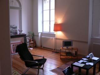 1 bedroom Apartment with Internet Access in Bordeaux - Bordeaux vacation rentals
