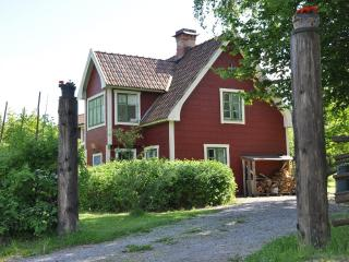 Nice House with Internet Access and A/C - Uppsala vacation rentals