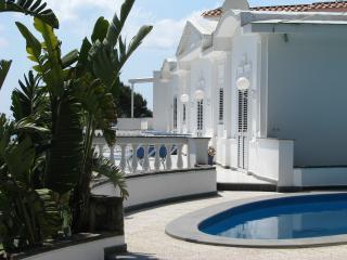 Villa Collywood - Amalfi Coast vacation rentals