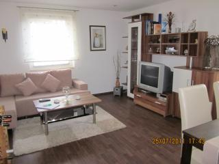 Nice Condo with Internet Access and Dishwasher - Torgau vacation rentals
