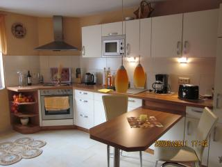 Nice Condo with Internet Access and Satellite Or Cable TV - Torgau vacation rentals