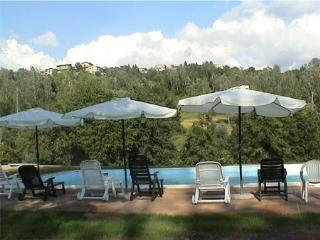 Eco Farmhouse with horses C1 - Castiglione Di Garfagnana vacation rentals