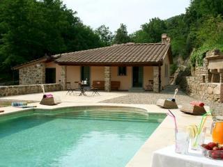 Tuscany Villa 8 with swimmingpool - Greve in Chianti vacation rentals