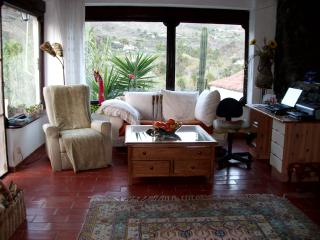 Nice Finca with Internet Access and A/C - Fataga vacation rentals