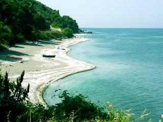 Seaside apartments in Velika Central Greece! - Velika vacation rentals