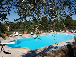 Old Farm B&B Tuscan Hills - Montecatini Val di Cecina vacation rentals