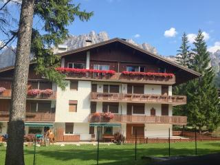 Attico in tipico stile ampezzano - Cortina D'Ampezzo vacation rentals