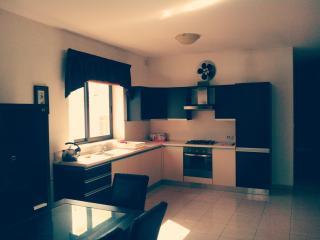Perfect 3 bedroom Condo in Mosta - Mosta vacation rentals