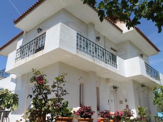 Villa Z in Athens riviera - Varkiza vacation rentals