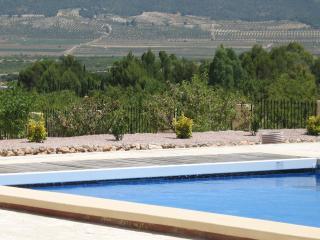 Lovely 4 bedroom Alicante Villa with Internet Access - Alicante vacation rentals
