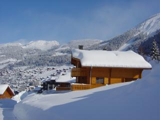 Chalet Les Frangins - Chatel vacation rentals