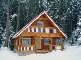 Perfect 3 bedroom Borovets Chalet with Internet Access - Borovets vacation rentals