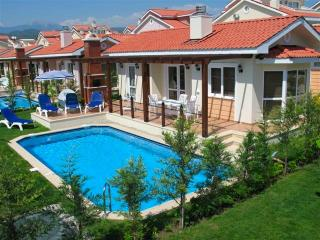 Luxury Villa with Private Pool - Yaniklar vacation rentals