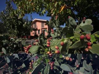 La Casa di Filippo - Catania vacation rentals