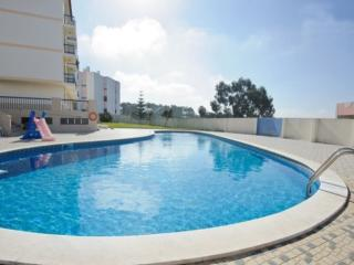 Nice Condo with Dishwasher and Garden - Ericeira vacation rentals