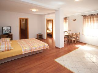 Spacious app - Split central 2+2 - Central Dalmatia Islands vacation rentals