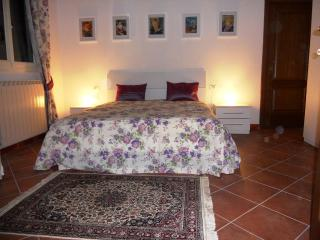 Ricasoli Viola - Florence vacation rentals