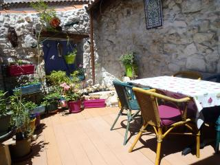 1 bedroom House with Internet Access in Causses et Veyran - Causses et Veyran vacation rentals