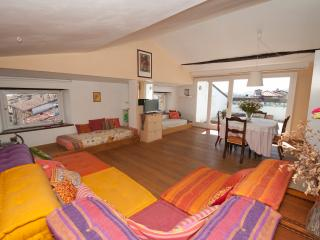 Lucca penthouse apartment - Lucca vacation rentals