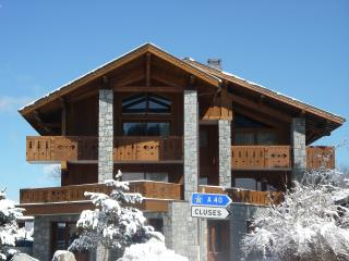 Sunny Condo with DVD Player and Parking - Les Carroz-d'Araches vacation rentals