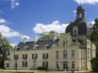 Perfect 10 bedroom Chateau in Richelieu - Richelieu vacation rentals