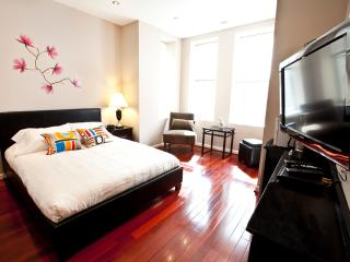 Amazing Studio in Penn Quarter(206) - District of Columbia vacation rentals