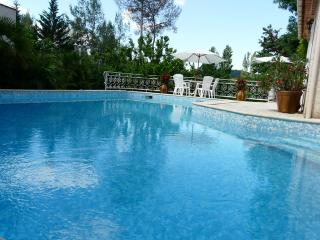 Nice Villa with Internet Access and Satellite Or Cable TV - Saint-Clement-de-Riviere vacation rentals