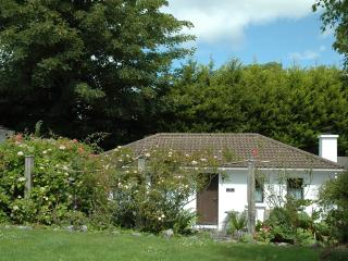 1 bedroom Cottage with Internet Access in Kenmare - Kenmare vacation rentals