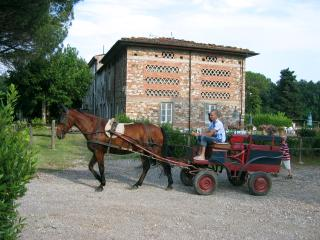 Kid-friendly apartment in village of Marlia, shared outdoor pool, staffed property - Lucca vacation rentals