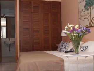 LUXURY SUITE  CENTER   WIFI - Seville vacation rentals