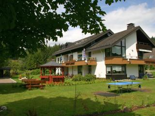 Romantic 1 bedroom Condo in Schluchsee - Schluchsee vacation rentals