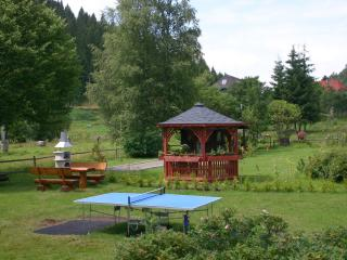Nice Condo with Internet Access and Game Room - Schluchsee vacation rentals