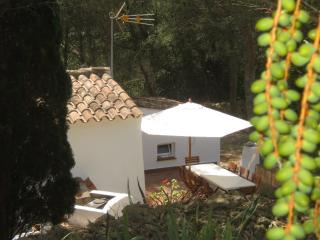 Cozy 2 bedroom Vacation Rental in Alaior - Alaior vacation rentals