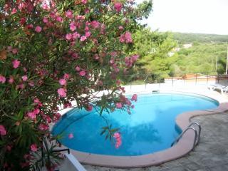 Cozy 3 bedroom Villa in Alaior - Alaior vacation rentals
