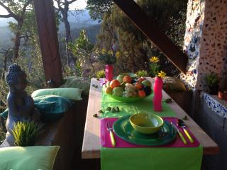 GREEN DUPLEX - Blanes vacation rentals