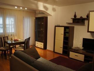 Amazing 1 bed next to Cismigiu - Bucharest vacation rentals