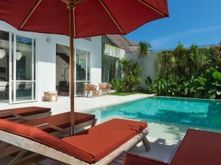 Modern 3 bedroom, Oberoi, Villa Alina - Seminyak vacation rentals