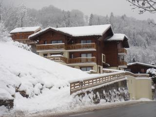 3 bedroom Condo with Television in Les Houches - Les Houches vacation rentals