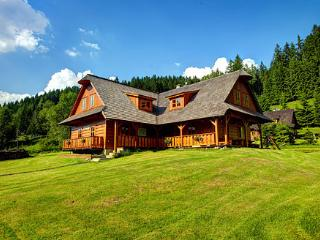 Lovely Chalet with Internet Access and Grill - Velke Karlovice vacation rentals