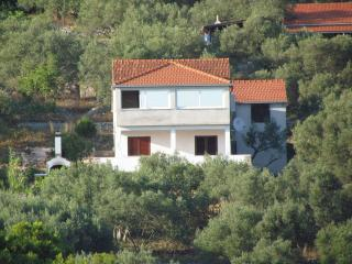 Beautiful Guest house with Internet Access and A/C - Vela Luka vacation rentals