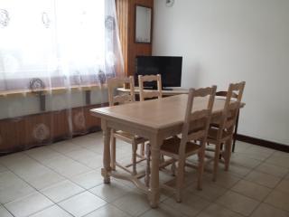 Appartement  agréable et lumineuse SECURISEE - Saint-Jacques-des-Blats vacation rentals