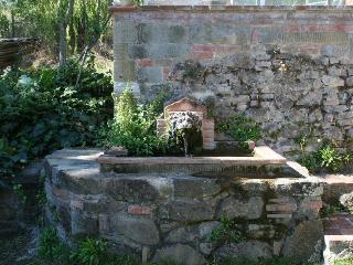 Pian dei Teri - Immersed in hills of Chianti - Cavriglia vacation rentals